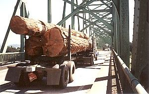 Logging truck on